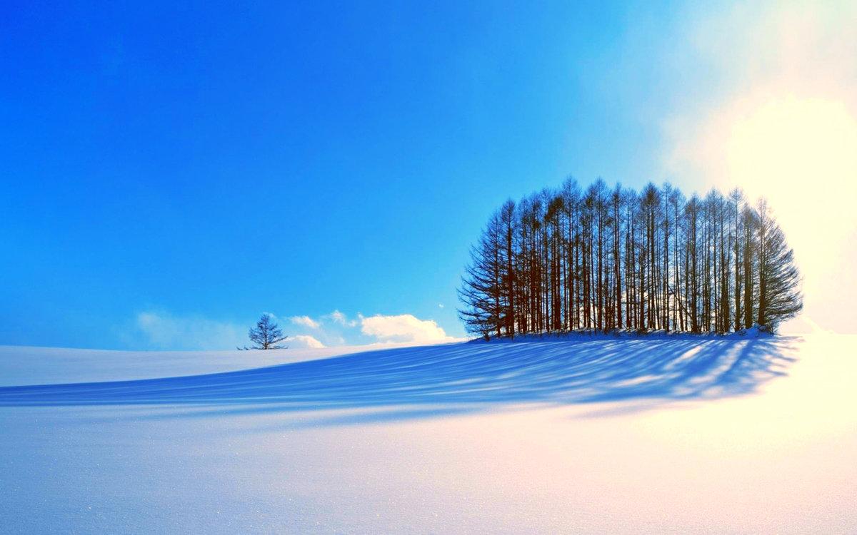 желаю зимние картинки высокое качество должен быть отталкивающим