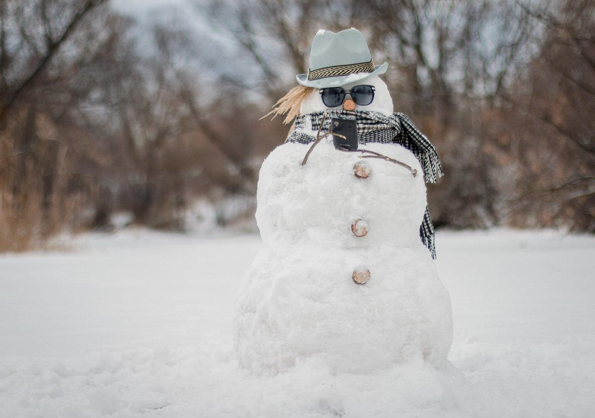 них жирный снеговик картинки бисквит размягченное сливочное