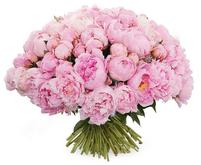 Пионы заказать букет москва, переезд магазин цветов