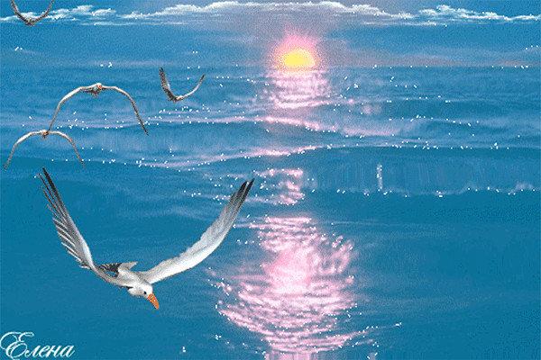 Голубые глаза, анимация открытки море