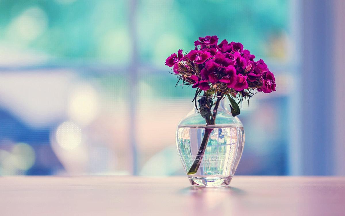 Красивые картинки с вазами цветов, открытки для