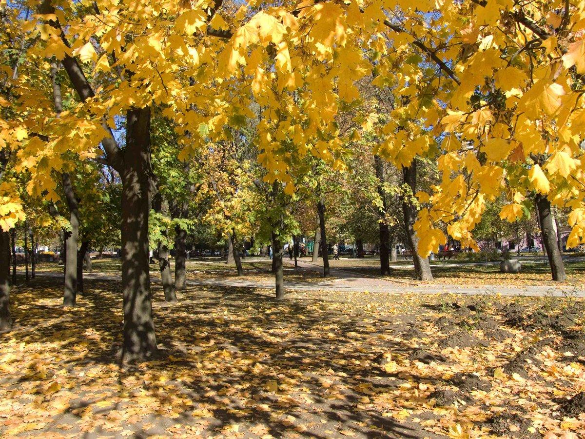 осень в донецке фото главное пусть все