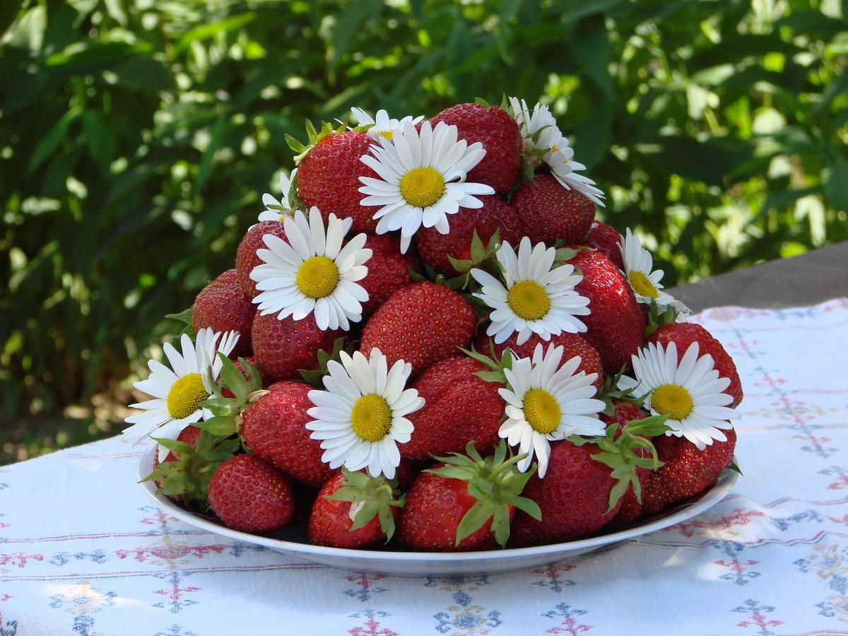 Открытки с цветами и ягодами, максим смешные открытка