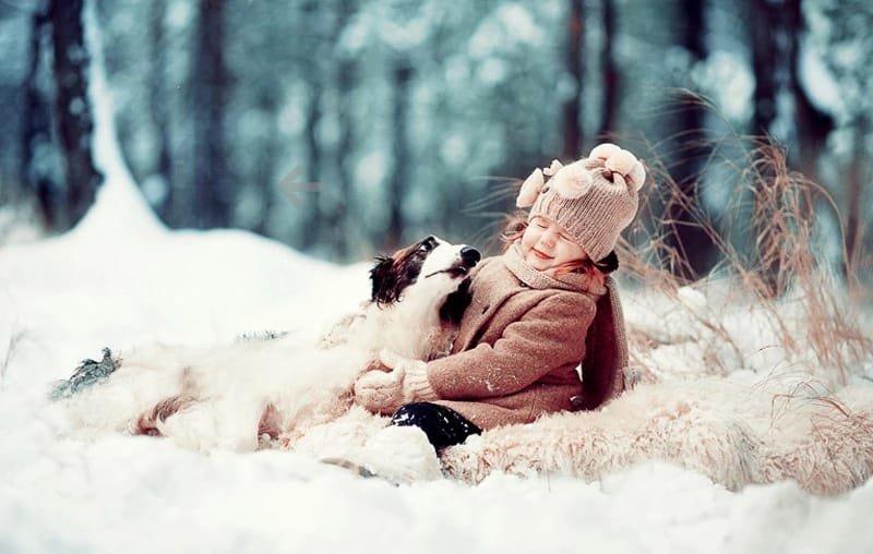 Красивые картинки дети и животные зимой