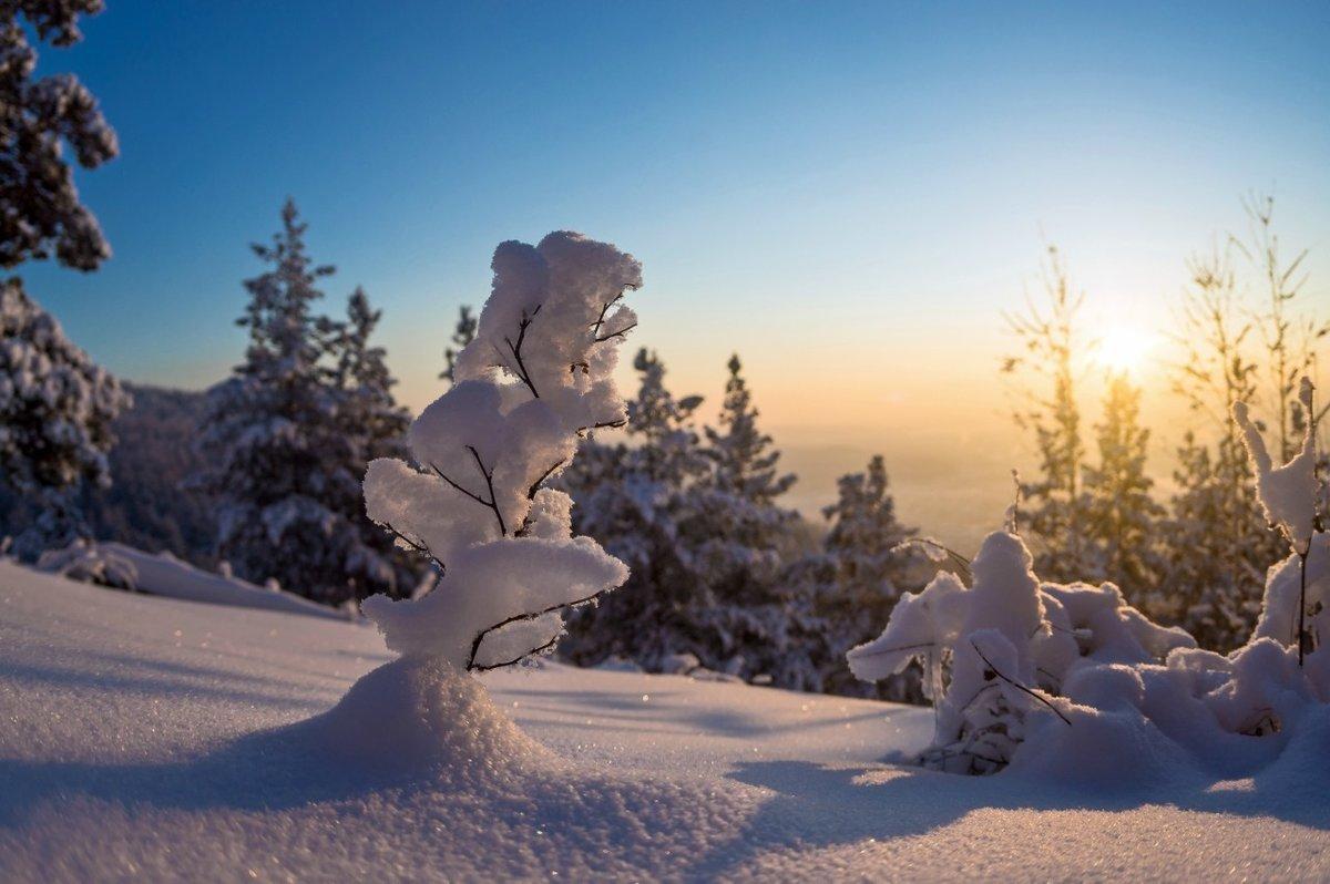 идеально картинка зима круче экс-прокурора