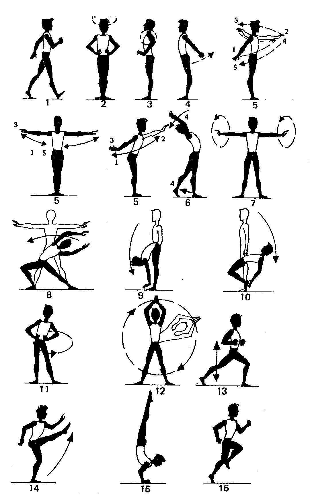 Разминка для гимнастики картинки