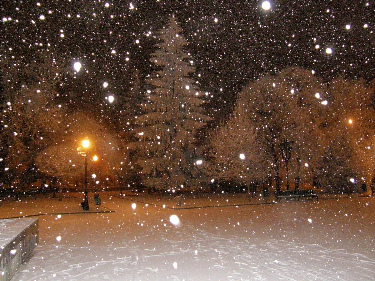 Фото снег идет в городе