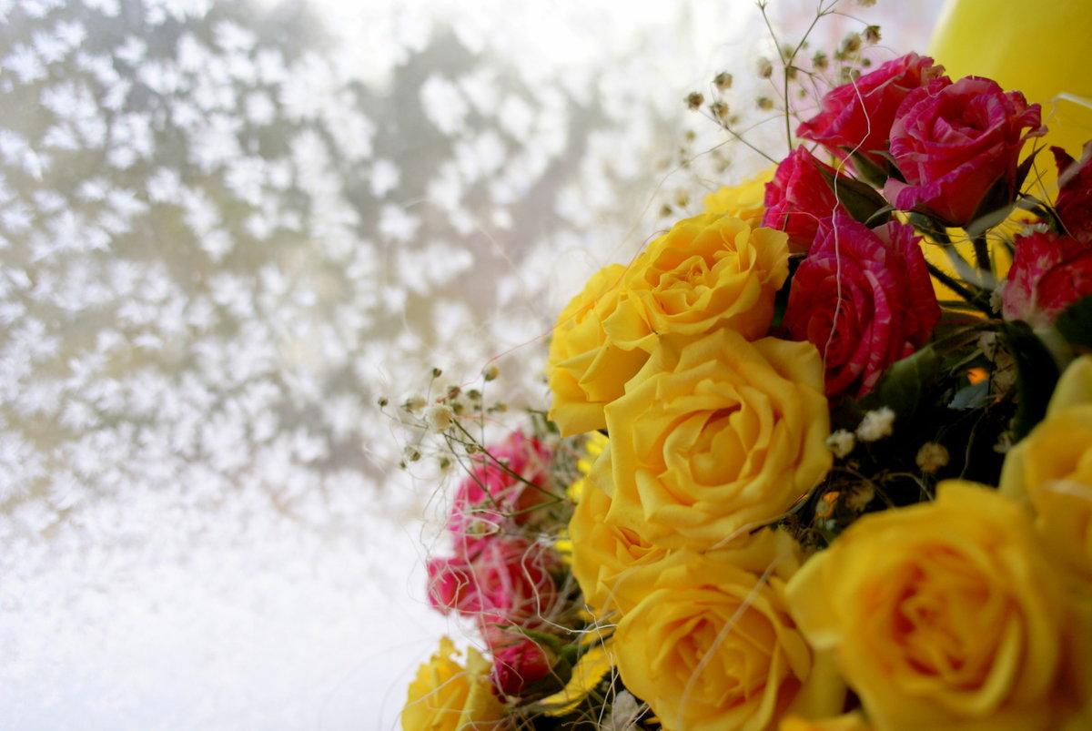 Для девушек, зимняя открытка с цветами