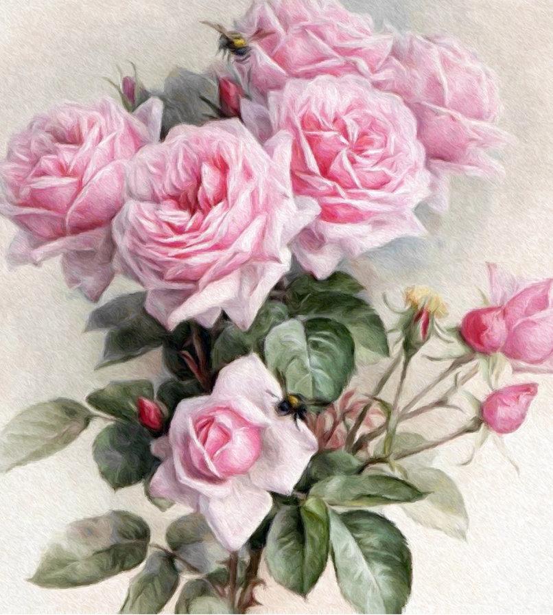 Крутые, цветы картинки ретро