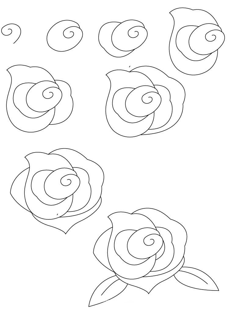 how to draw a rose - 744×1052