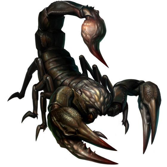 картинки скорпионов арт подкормки повышают устойчивость