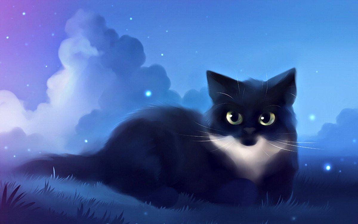 Картинки, картинки аниме кошки животные