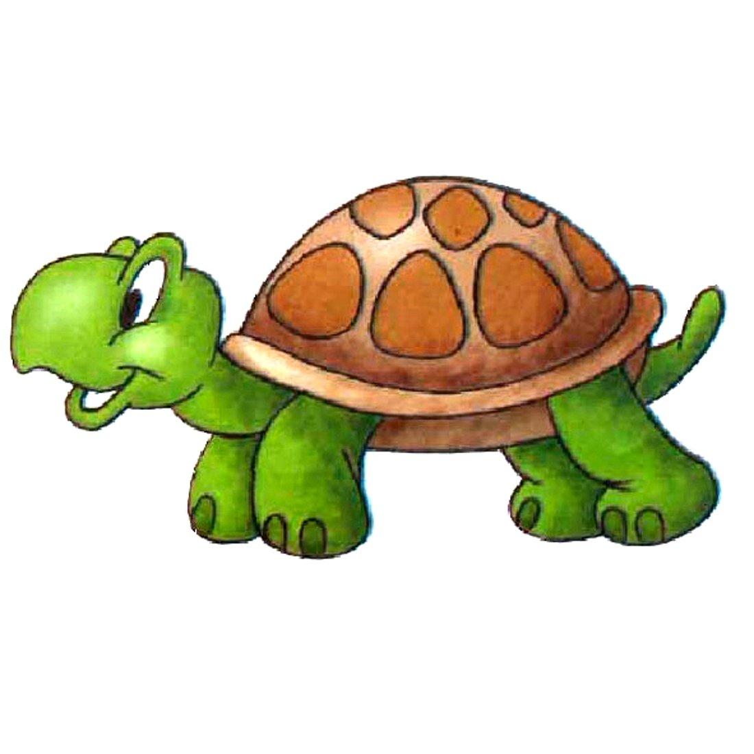 Картинки с черепахами мультяшные