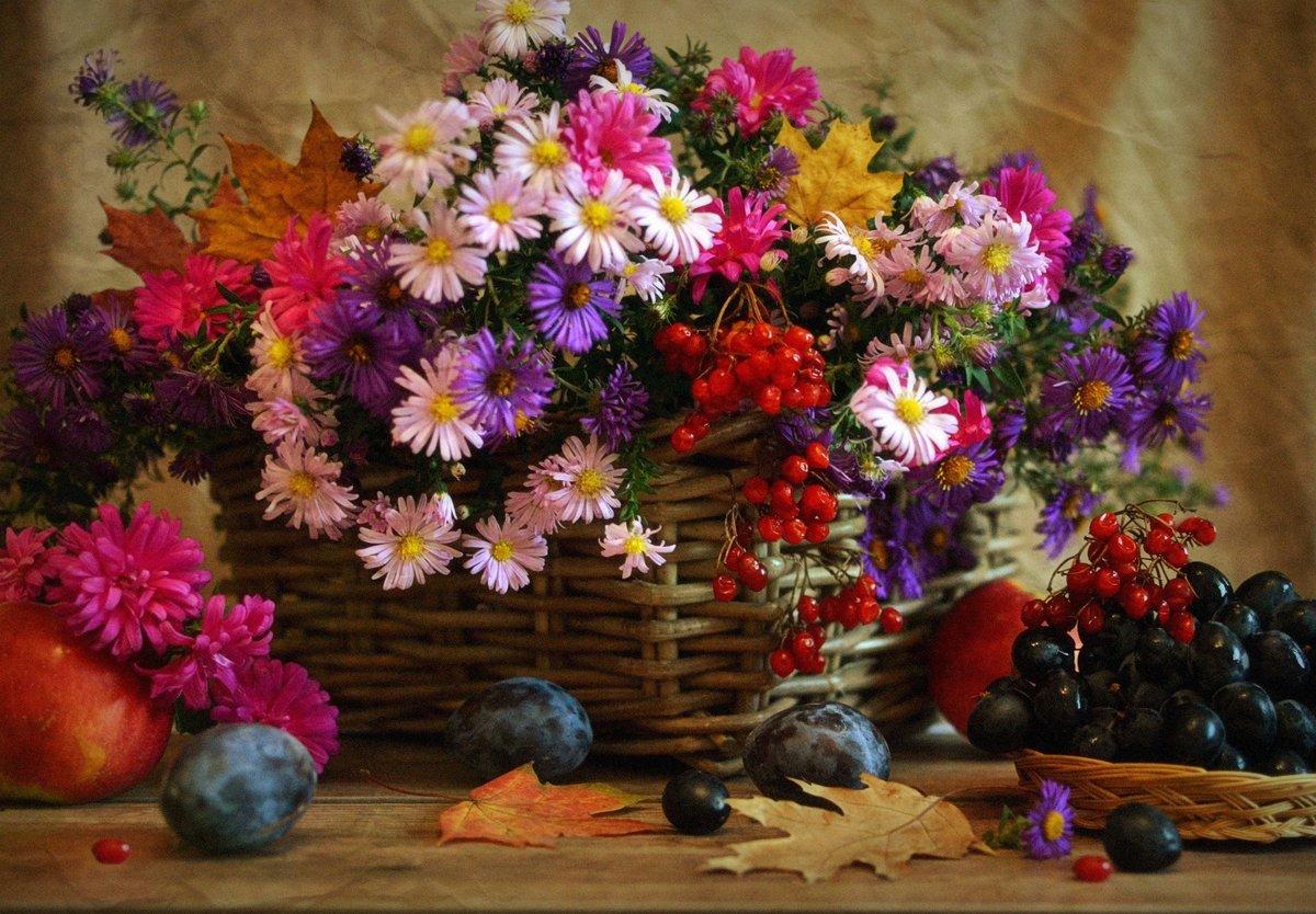 Девочке днем, красивые открытки с осенними цветами и пейзажами