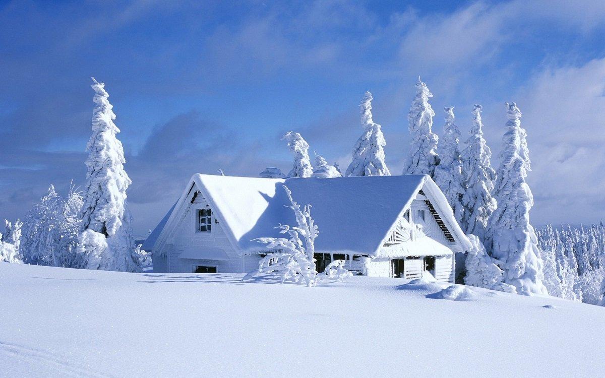 Поздравления, картинки зимний домик в лесу