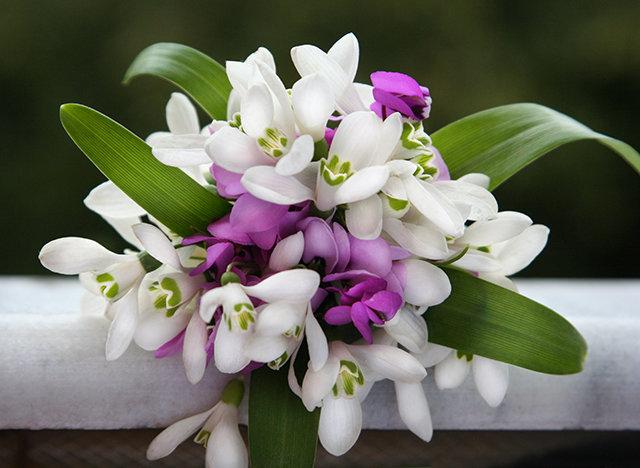 Букет из цветов подснежников, купить цветы