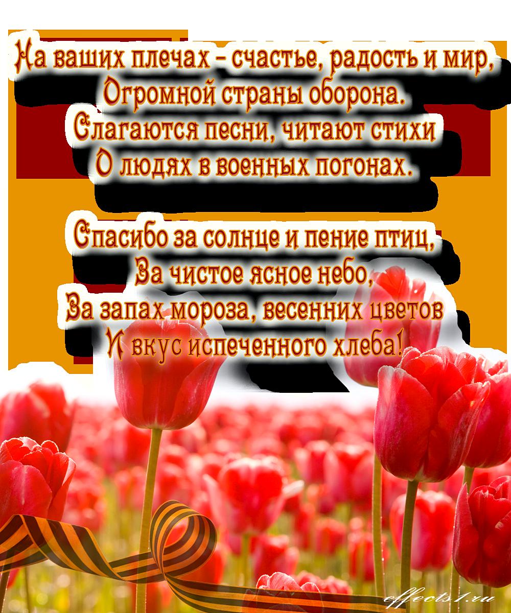 стихи поздравления ко дню защитника отечества смену живому