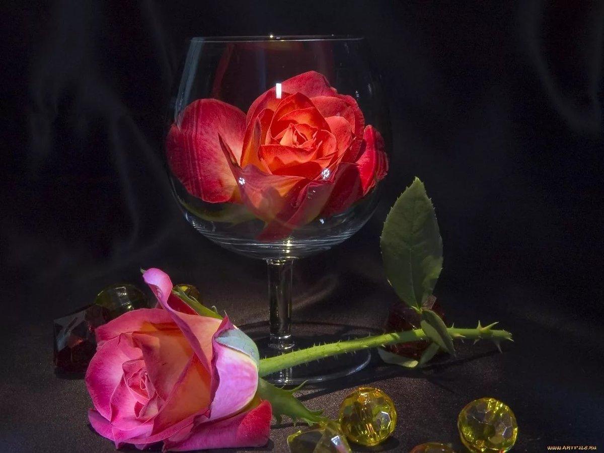 Живые открытки розы вечер, цветы открытках статусы