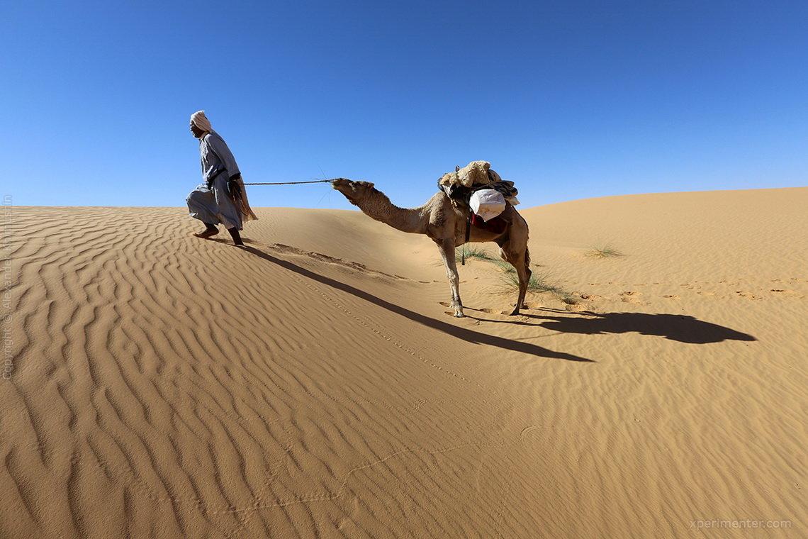 Пустыня в пустыне демотиваторы