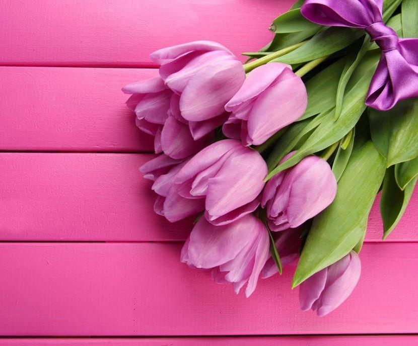 Прощеным, тюльпаны открытки девушке