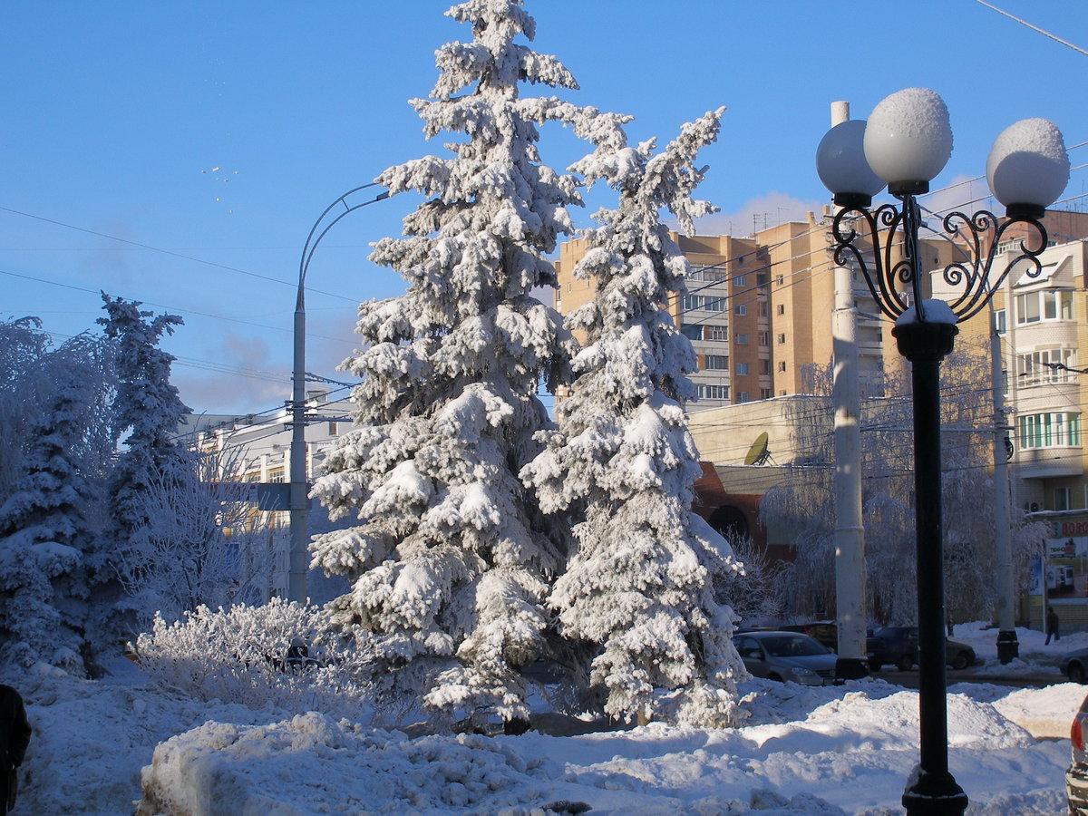 можно картинки зима в нашем городе скорпион