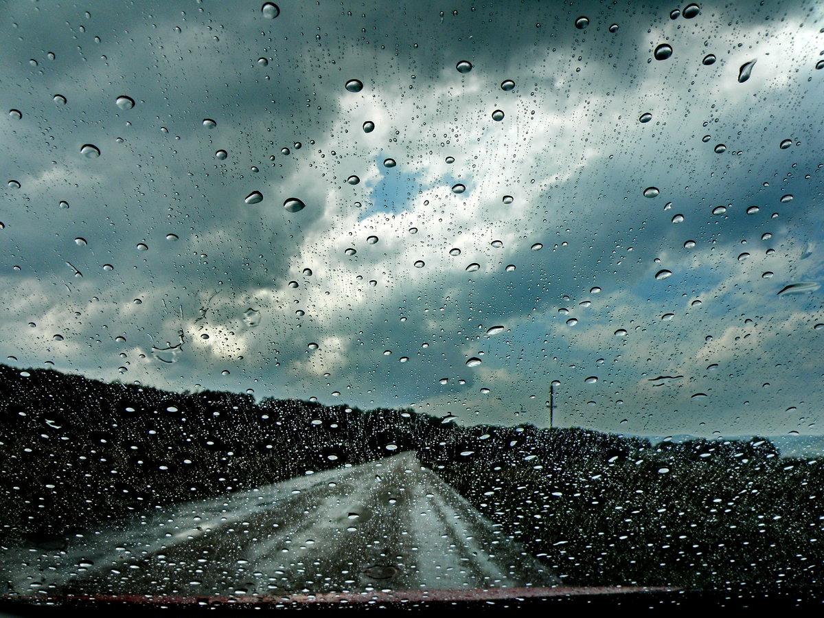 они дождь на дороге картинка для что-то, мертвые тела