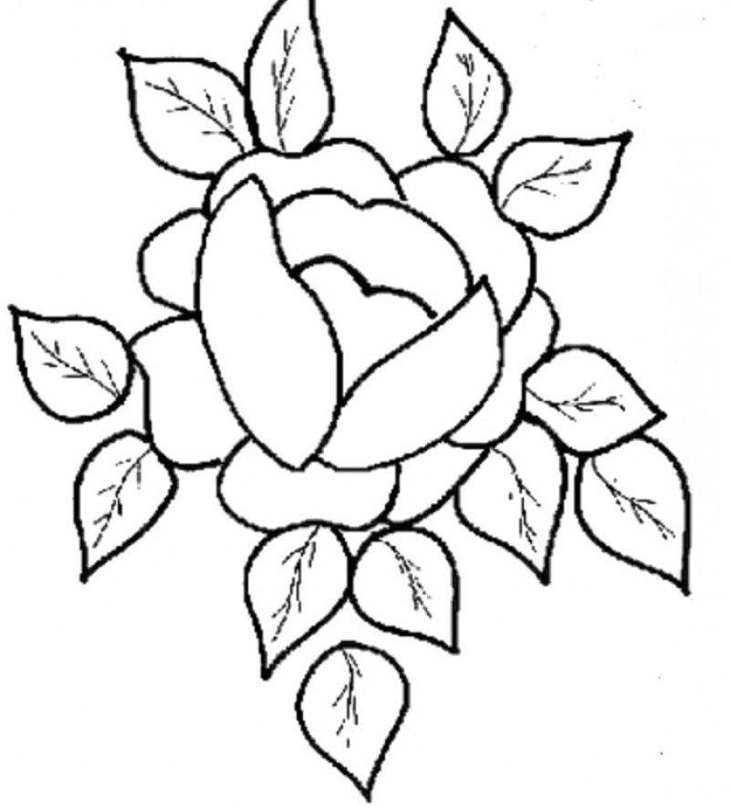 Фон, картинки цветами для срисовки