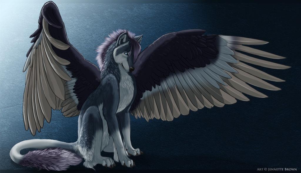 Черные ангелы волки картинки