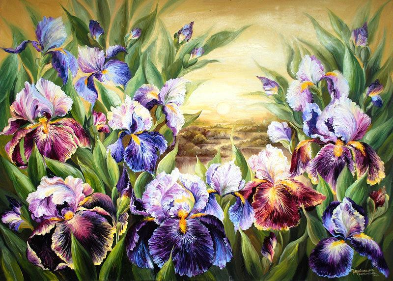 Картинки с изображением ирисы