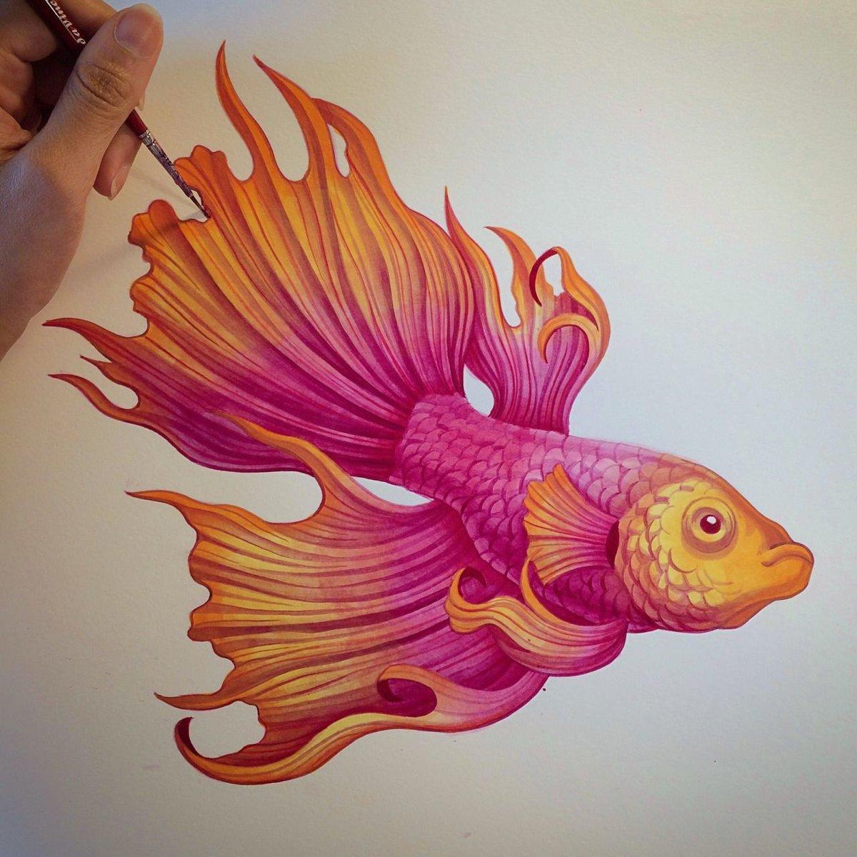 Рисунки красивые рыбы