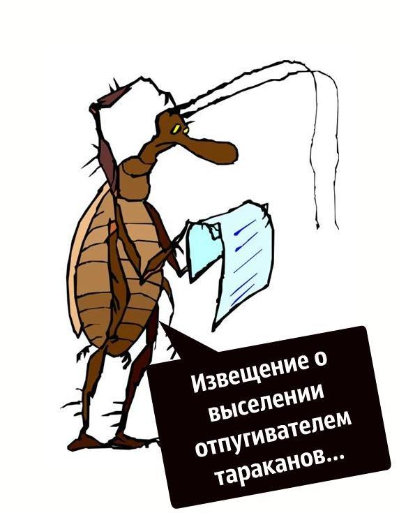 юмор картинки про тараканов чем