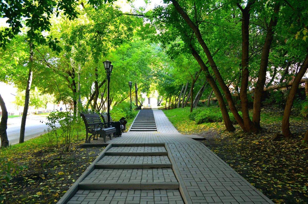 посещении картинка парковая аллея фотографию