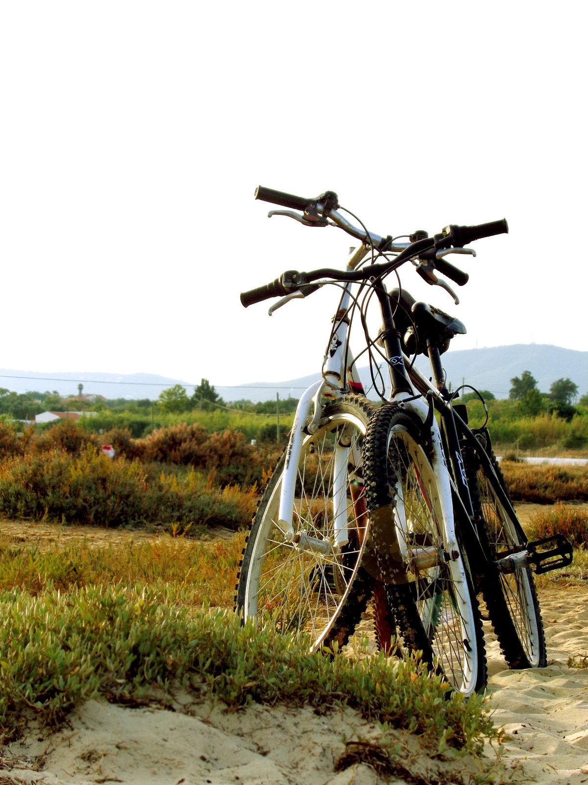 Два велосипеда картинки