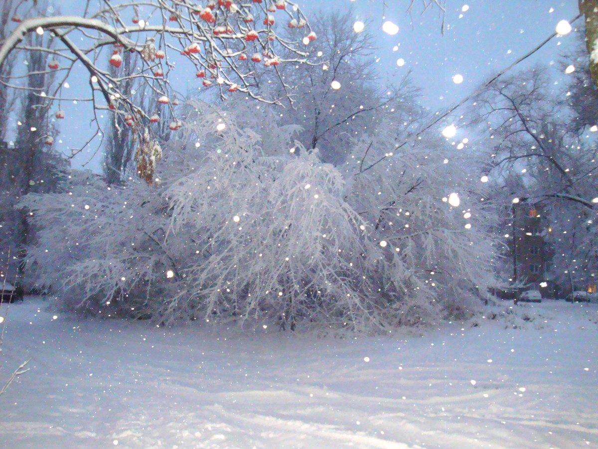 картинки снежная волшебная зима них