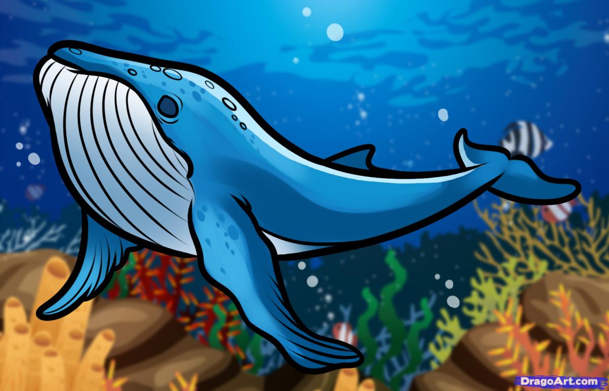 Нарисованные картинки для детей кит