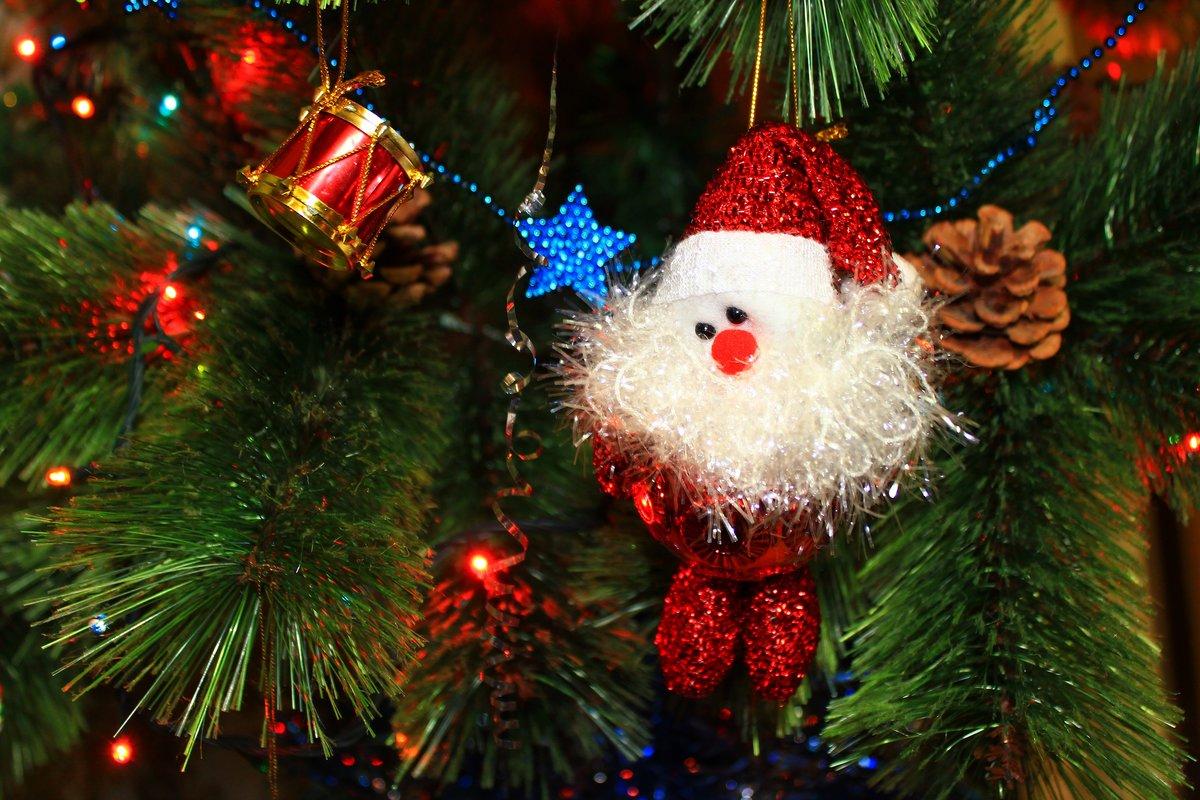 для картинка дедушка мороз у елки все нравится