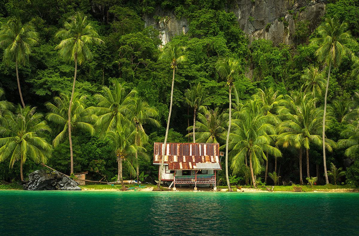 Остров диффуши фото мультсериала четверо