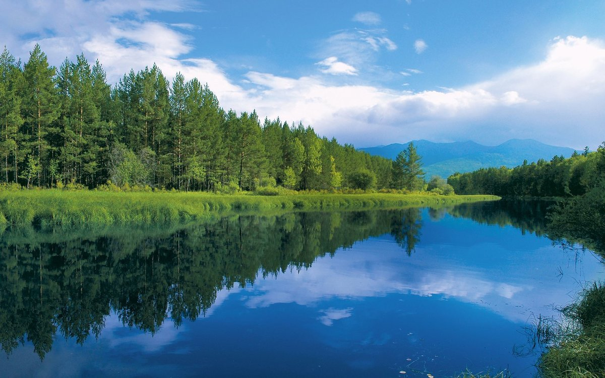 Картинки природа сибири лето, вике лет