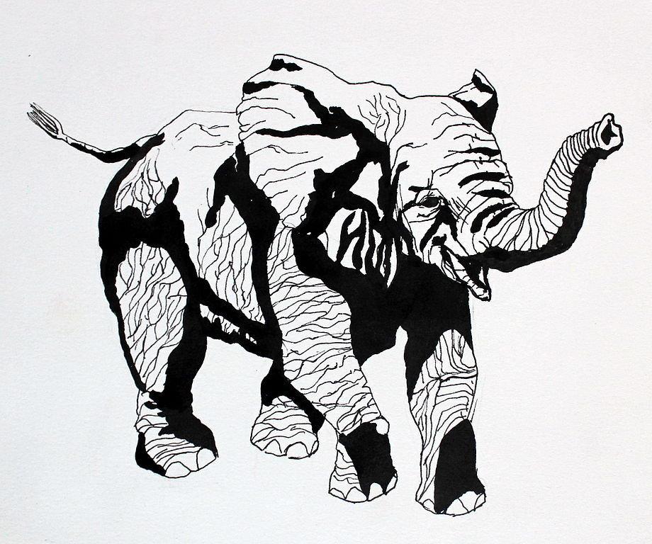 деталью интерьра графика картинки черно белые животные моделью контакт