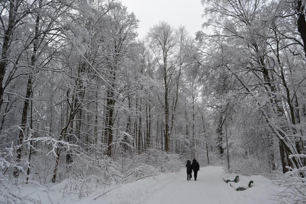 любовь испытываю непрофессиональные фото зима той стороны