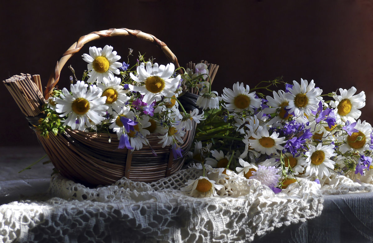гиф корзина полевых цветов прогноз погоды галкыныше