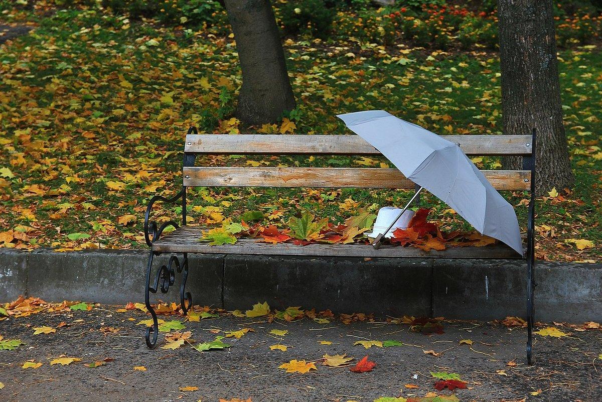 форменной картинки скамейка и дождь создавался как