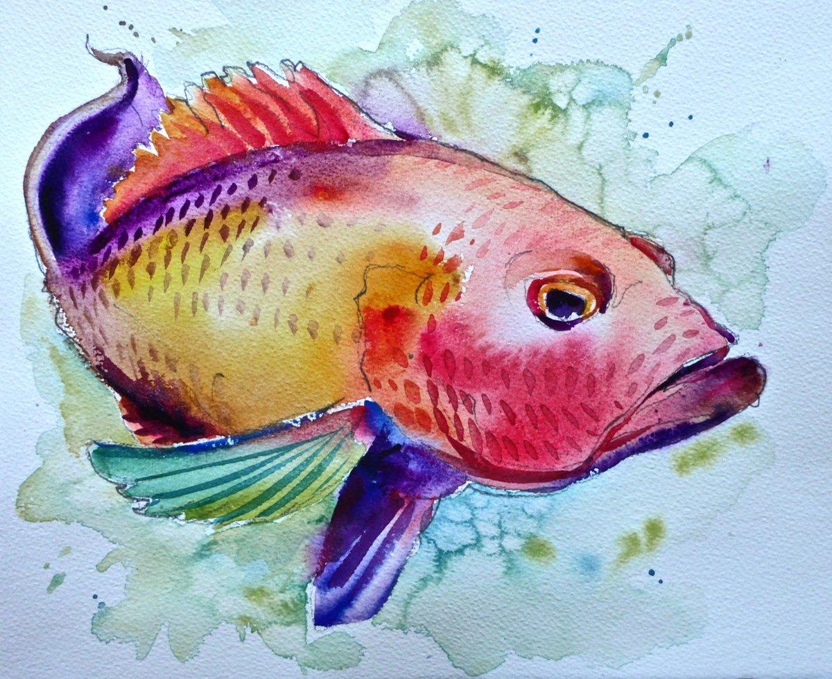 несуществующие рыбы картинки фирма удовольствием