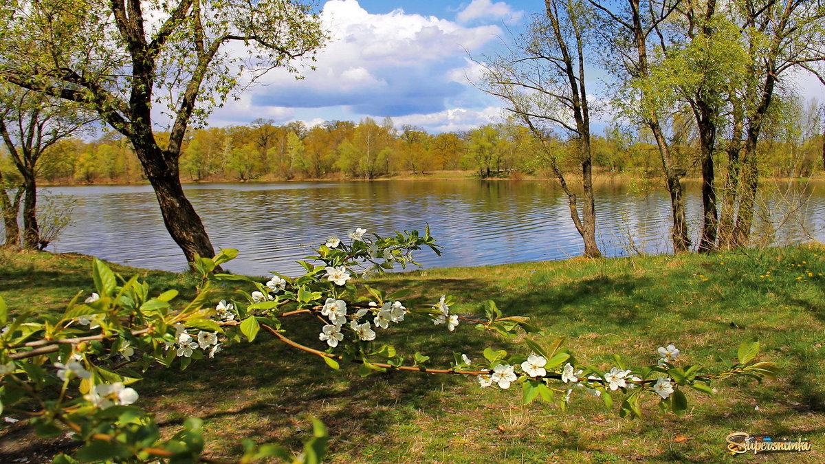 картинки на рабочий стол апрельские пейзажи красивые
