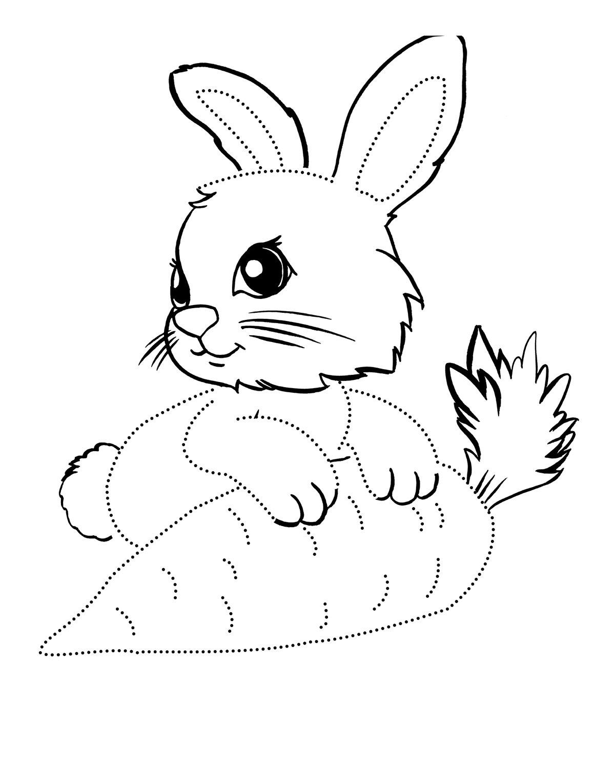 Заяц с морковкой раскраска