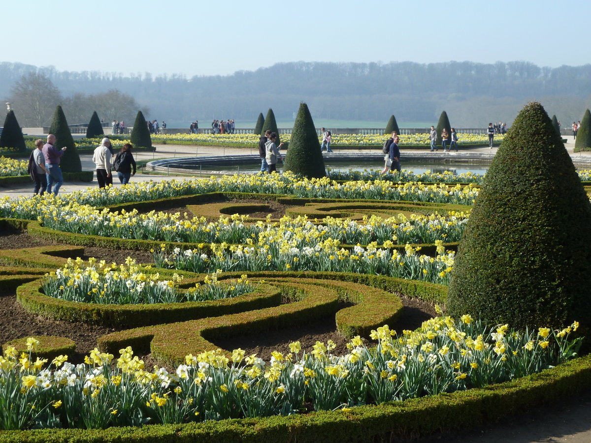 парки версаля фото стригущего