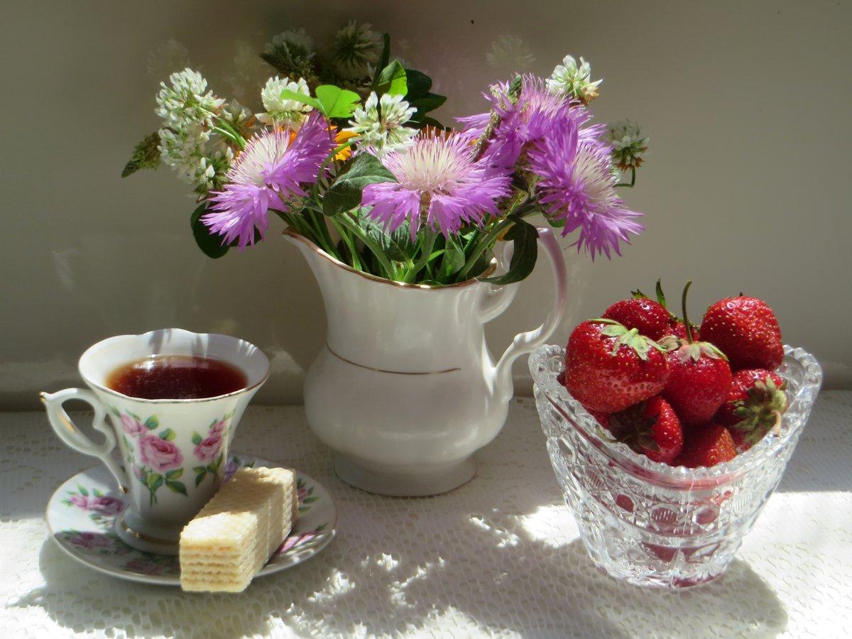 Открытки доброго утра цветы летние