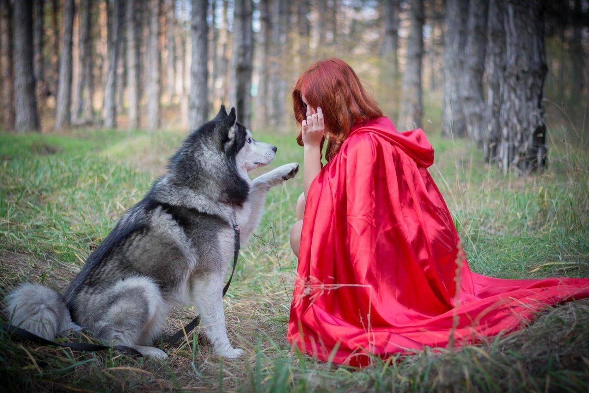 Выражения открытках, картинки с красной шапочкой и волком