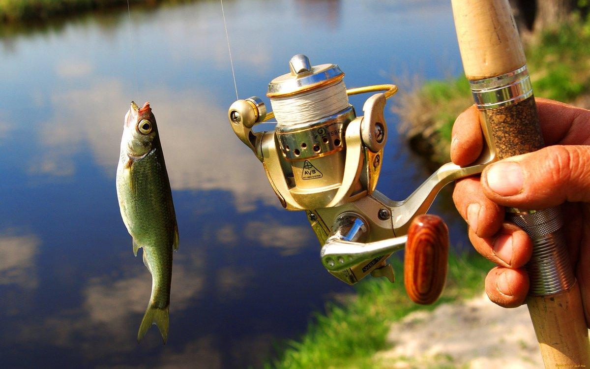 Рыболовные картинки, днем рождения