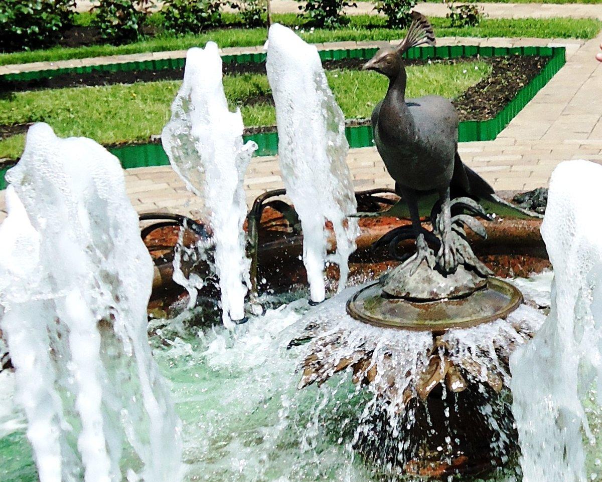 Парковый фонтан фото рисунок